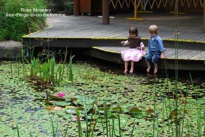 kids activities childrens garden pond