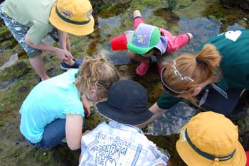 Rockpool Ramble at the Summer By the Sea event